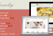 banner-magento-jewelry-theme